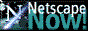 Download Netscape Now!